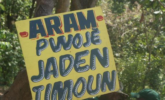 Ma randonnée avec les jeunes cabris d'Aram Randonneurs le samedi 1er avril 2017