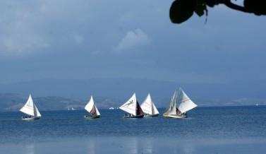 Régate devant Port Morgan à l'Île à vache en Haïti avec les voiliers équipés